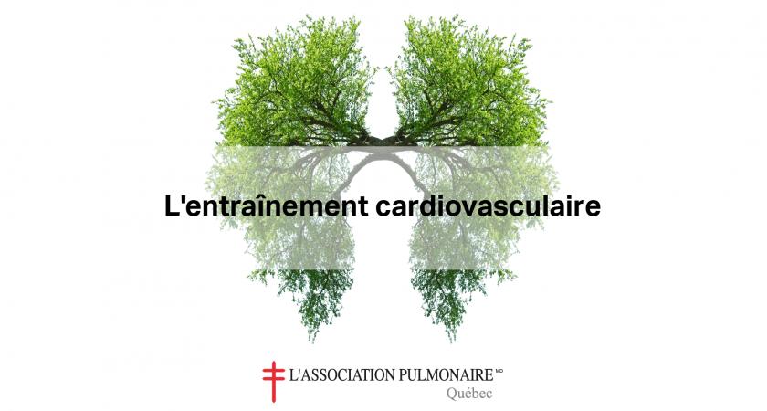 L'entraînement cardiovasculaire